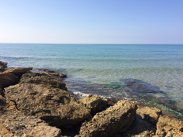 panorama spiaggia punta secca